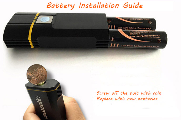 USB bike light with replaceable batteries